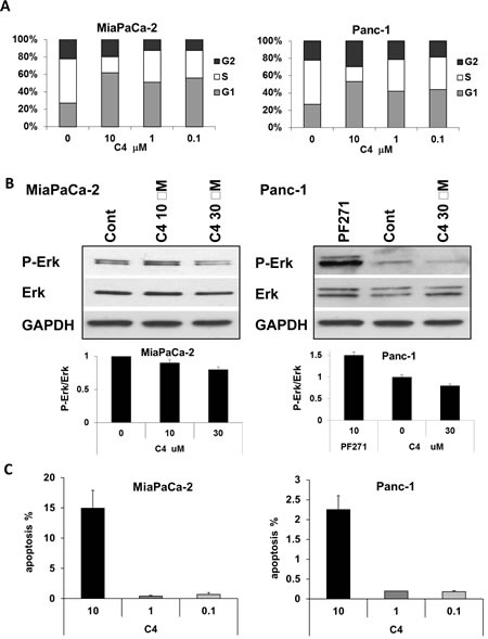 Treatment with C4 caused cell cycle arrest, dose-dependent apoptosis, and dephosphorylation of Erk1/2.