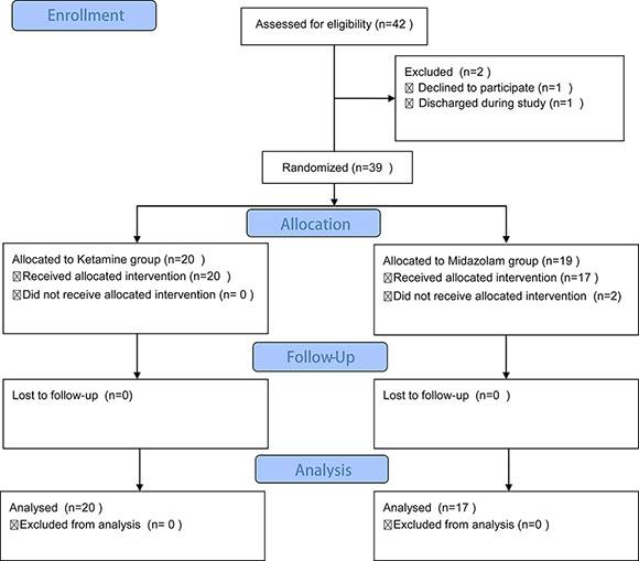Flow diagram of the present study.