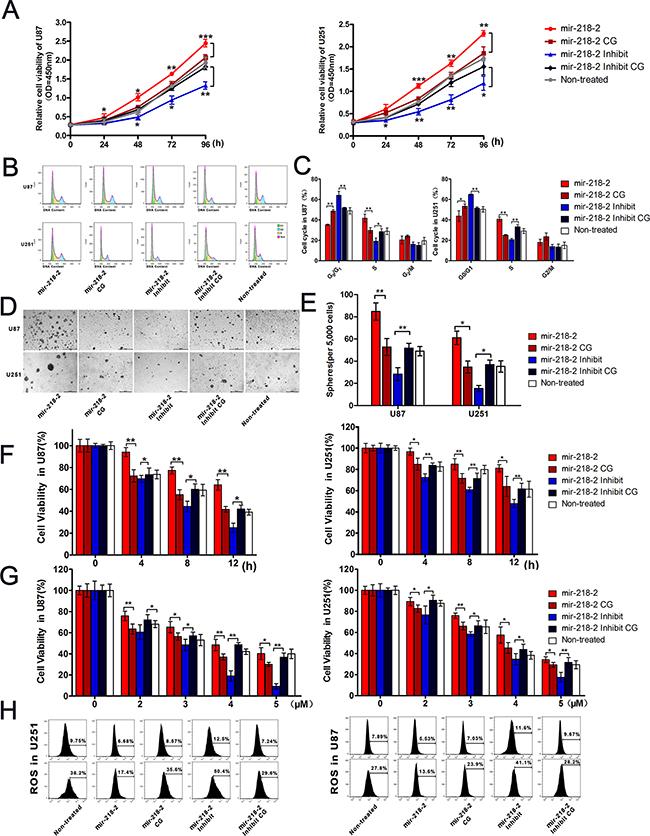 mir-218-2 increases glioma proliferation and drug resistance to β-lapchone in vitro.
