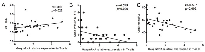 Correlation between Gαq mRNA levels in SLE T cells and laboratory values.