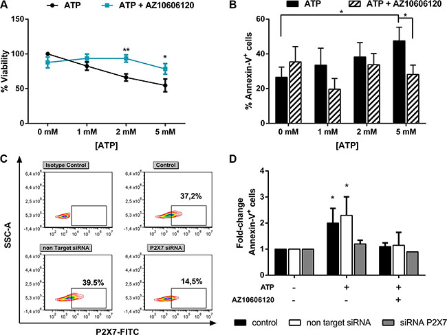 ATP triggers apoptosis of leukemia cells from AML patients via P2X7 activation.