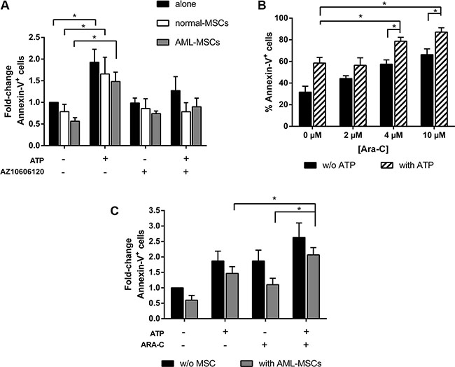 Stroma cells do not affect antineoplastic activity of ATP.