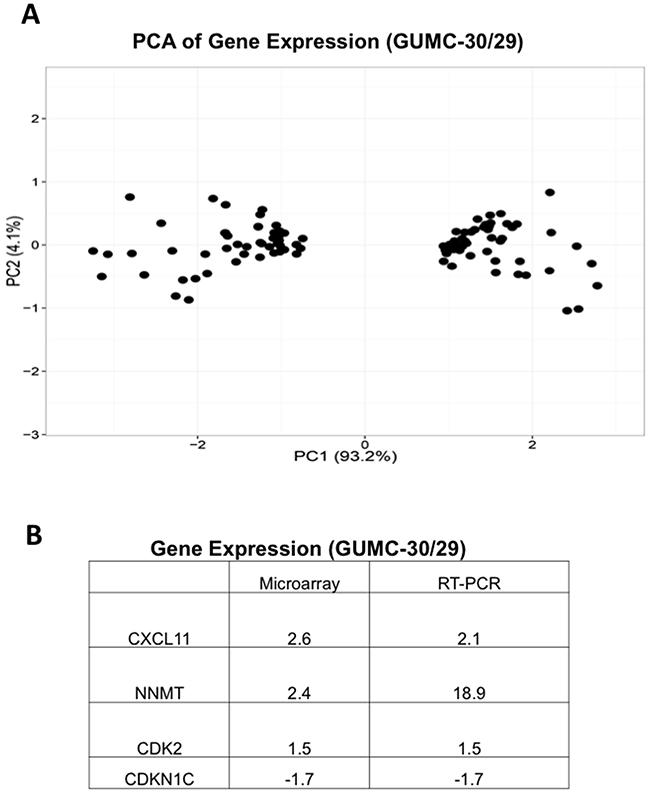 Differential gene expression in GUMC-29 and GUMC-30.