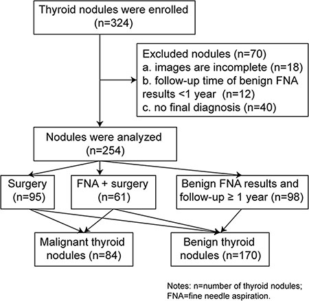 The flowchart of thyroid nodule selection.