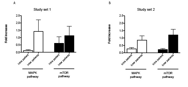 Representation of intra-tumor heterogeneity and heterogeneity across patients.