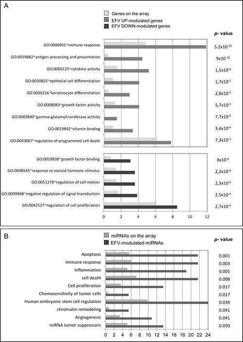 Gene ontology classification of EFV-modulated genes and miRNAs.