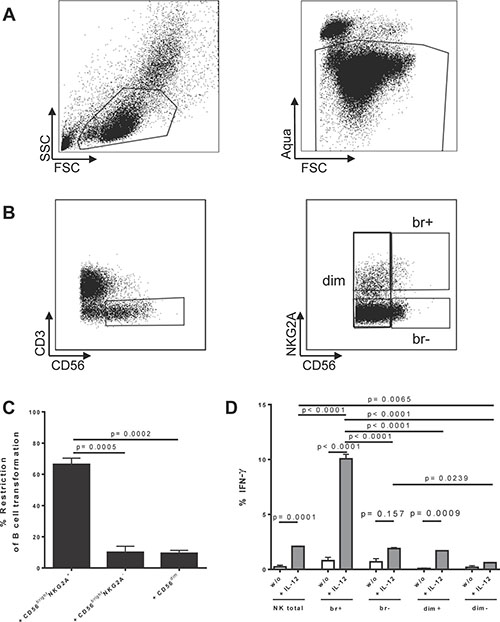 Identification and characterization of human CD56brightNKG2A+ NK cells and restriction of EBV in B cells.