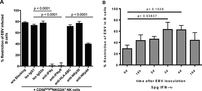 CD56brightNKG2A+-mediated restriction of EBV depends strongly on IFN-γ and partially on NKp44.