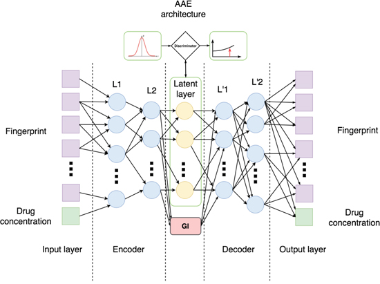 Architecture of Adversarial Autoencoder (AAE) used in this study.