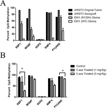 JHH-273 shows characteristic DNA hypermethylation which can be reversed with 5-azacytidine treatment