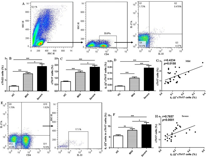 Increased frequencies of cTh22 and cTh17 cells in human CD4