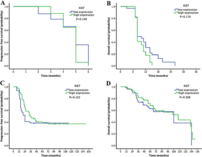 Kaplan-Meier survival curves for patients with epithelial ovarian cancer stratified by Ki67 expression in platinum-resistant and platinum-sensitive subgroups.