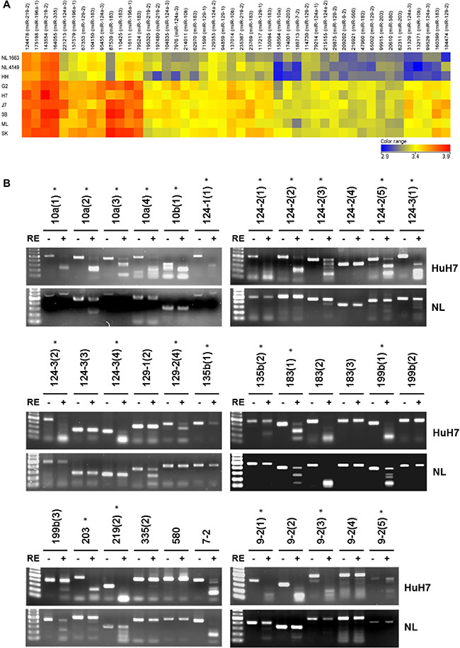 Differential DNA methylation profile of miRNAs in normal livers and HCC cells.