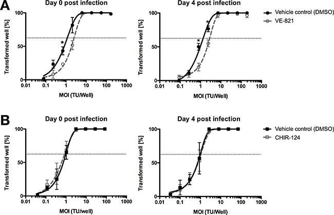 ATR inhibitor reduces EBV's B-cell transformation efficiency.