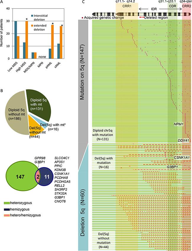 Whole spectrum of deletion 5q (del(5q)) and somatic mutations on chromosome 5q.