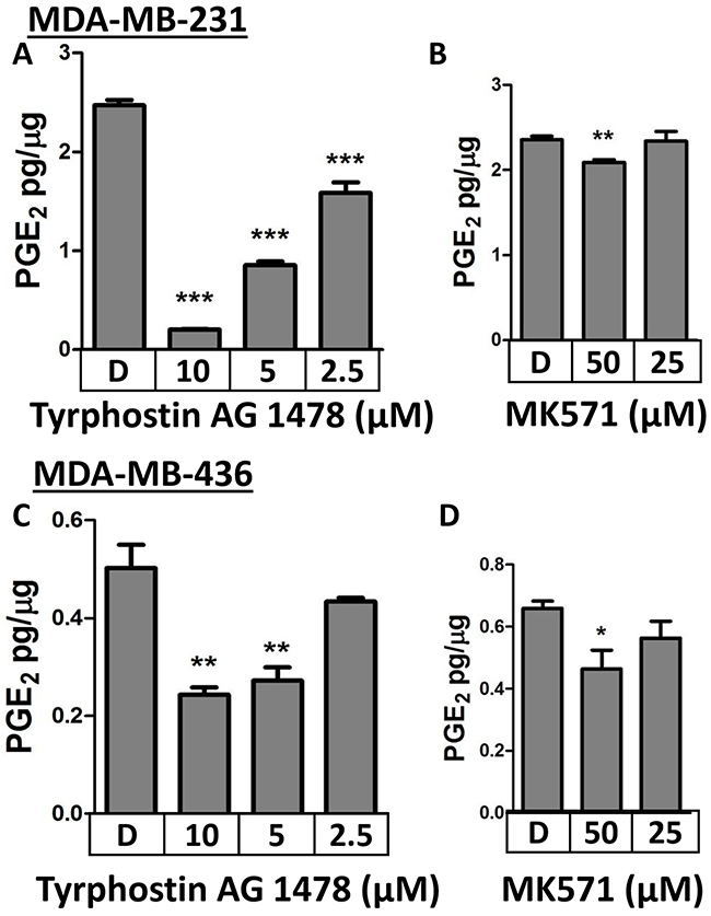 Pharmacologic inhibition of MRP4 with Tyrphostin AG1478 or MK571 suppresses PGE2 export.