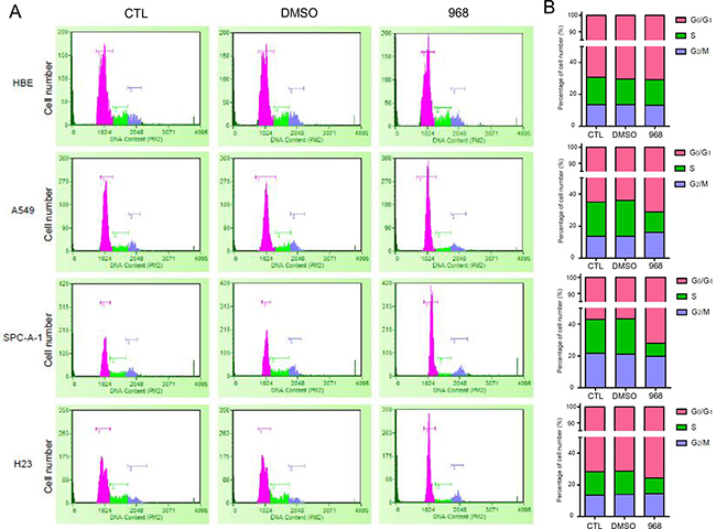 968 treatment induced G1/G0-phase cell cycle arrest.
