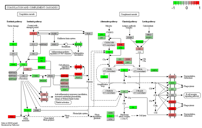 Gene expression profiles of the complement and coagulation cascades pathway in breast tissue.