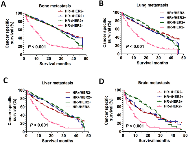 The CSS curves in breast cancer patients with different distant metastasis sites.