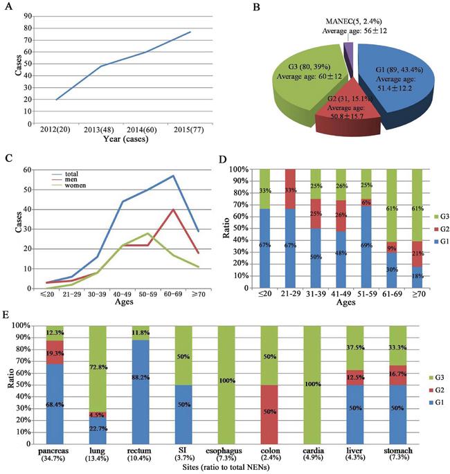 Epidemiology of 205 NENs patients.