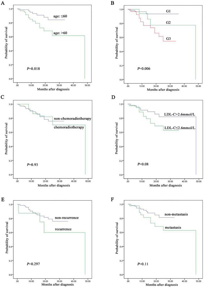 The prognostic factors assay by Kaplan-Meier analysis among the 157 NENs patients followed up.