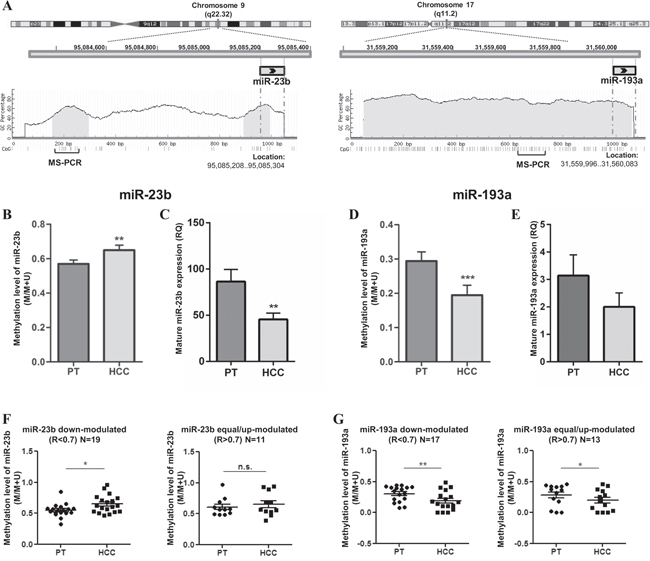 DNA methylation levels of miR-23b and miR-193a and relative expression in primary HCCs (N=30).