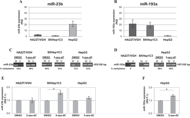 Expression and methylation levels of miR-193a and miR-23b in HCC cell lines.