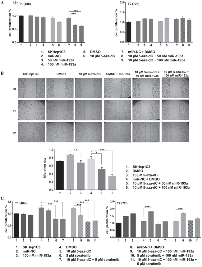 Ectopic expression of miR-193a in combination to 5-aza-dC treatment decreased proliferation and migration abilities of SKHep1C3 cells.