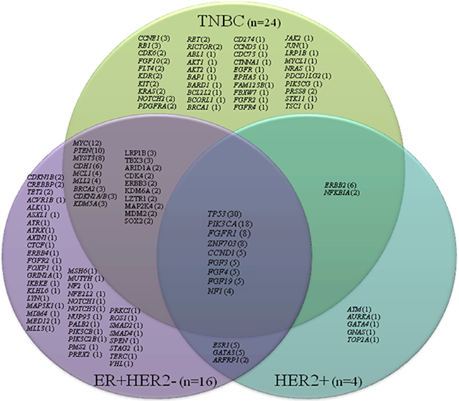 Venn diagram showing number of patients (in parentheses) with specific molecular alterations based on receptor status (TNBC, ER+HER2-, and HER2+) (n=44).