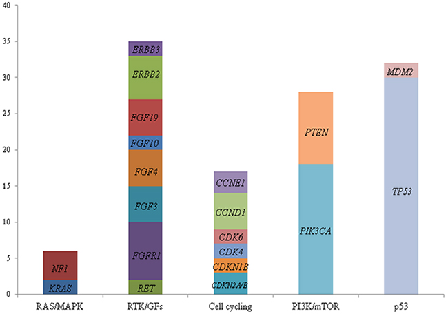 Number of breast cancer patients (n=44) with genetic alterations classified by cell signaling pathways: RAS/MAPK, RTK/GFs, cell cycling, PI3K/mTOR, and P53.