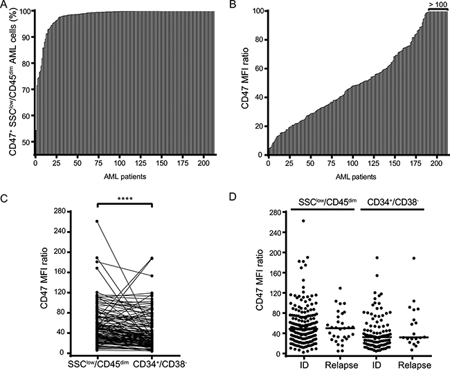 CD47 is highly expressed on bulk AML cells and AML LSCs irrespective of the disease state.