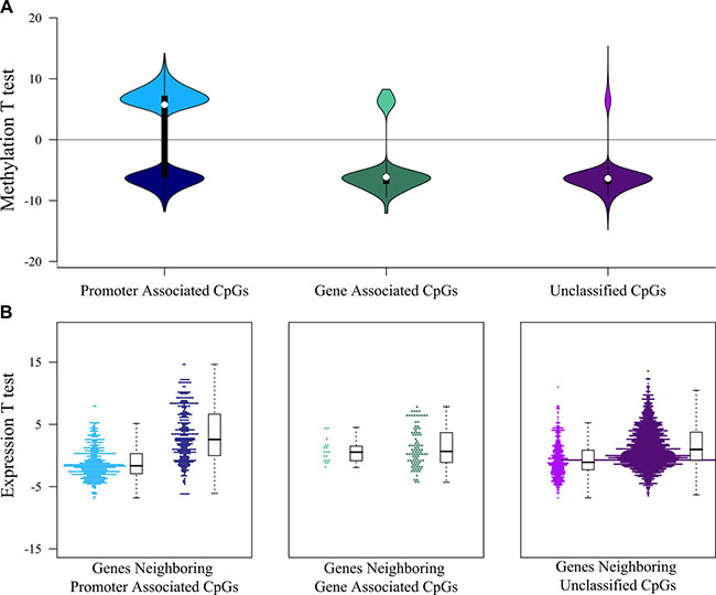 Interaction between DNA methylation and gene expression landscapes.