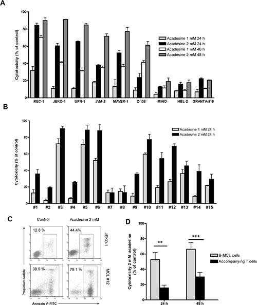 Acadesine induces cytotoxicity in both MCL cell lines and MCL primary samples.