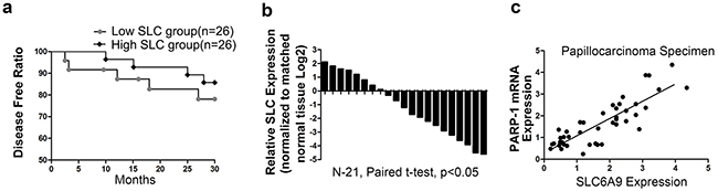 Low SLC6A9 expression predicted a worse prognosis in 131I-treated patients.