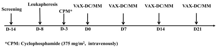 Treatment protocol (Schedule of vaccination)