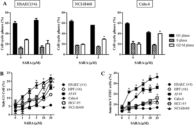 Effects of SAHA on cell cycle and cell death in normal lung and cancer cells.