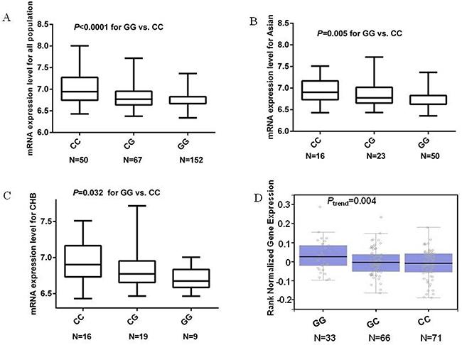 mRNA expression level of the MDM4 gene in EBV-transformed lymphoblastoid cell lines.