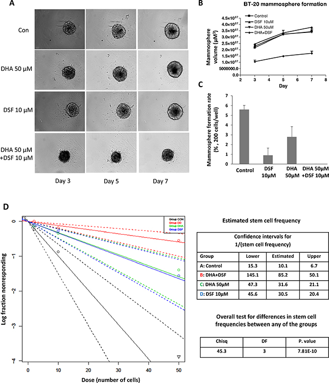 DHA enhances DSF-induced suppression of mammosphere formation.