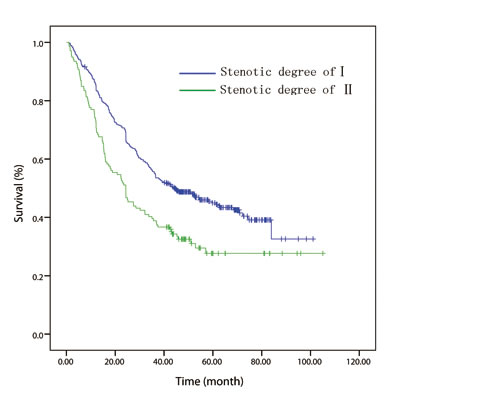 Kaplan-Meier overall survival curves for 508 patients with surgically resected esophageal squamous cell carcinoma stratified by endoscopic luminal stenosis.