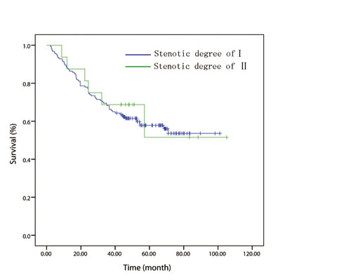 In patient with T1/2 disease, overall survival curve stratified by endoscopically luminal stenosis.