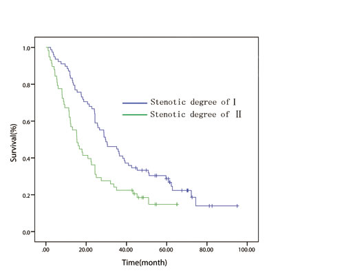 In patient with T4 disease, overall survival curve stratified by endoscopically luminal stenosis