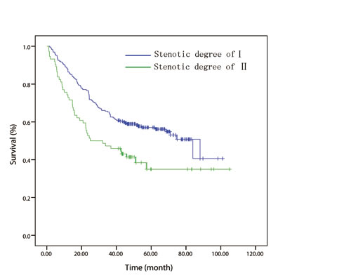 In patients with node-negative disease, overall survival curve stratified by endoscopically luminal stenosis.