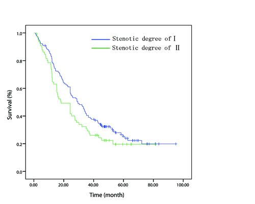 In patient with node-positive disease, overall survival curve stratified by endoscopically luminal stenosis.