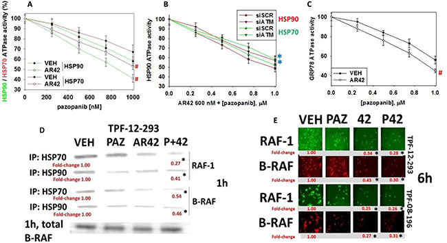 [Pazopanib + AR42] regulates chaperone function.