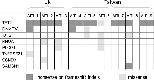 Distribution of the shortlisted pathogenic mutations in 9 cases of AITL investigated by WES.