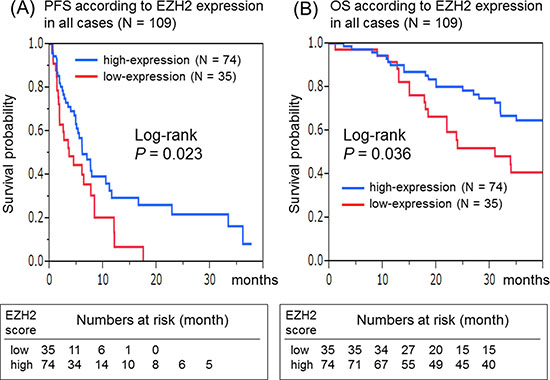 Kaplan–Meier survival curves of patients treated with anti-EGFR therapeutics in all cases (N = 109).