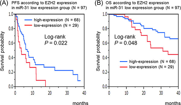 Kaplan–Meier survival curves of patients treated with anti-EGFR therapeutics in the microRNA-31 (miR-31)-5p low-expression group (N = 97).