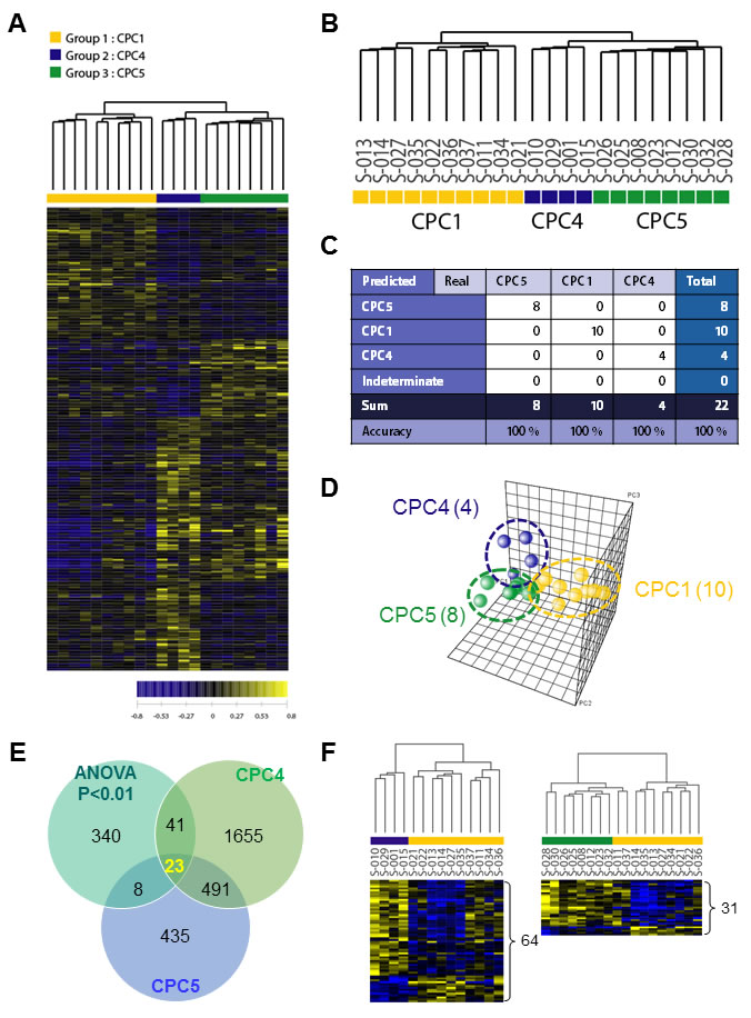 Hierarchical clustering analysis of expression profiling and determination of high-accuracy gene classifiers in CA patients.