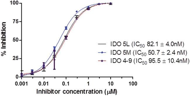 IDO enzyme inhibition assay.
