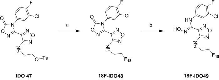 Scheme 2: Radiosynthesis of 18F-IDO49.